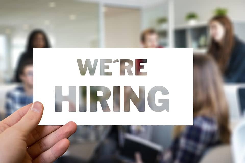 job seeker hiring company employment